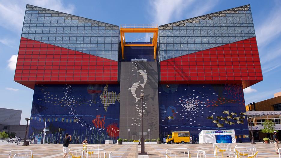 พิพิธภัณฑ์สัตว์น้ำไคยูคัง