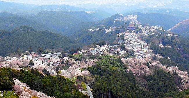 ภูเขาโยชิโนะ