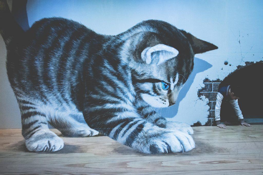 รูปภาพ 3 มิติ แมว